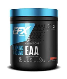 All American EFX Training Ground EAA